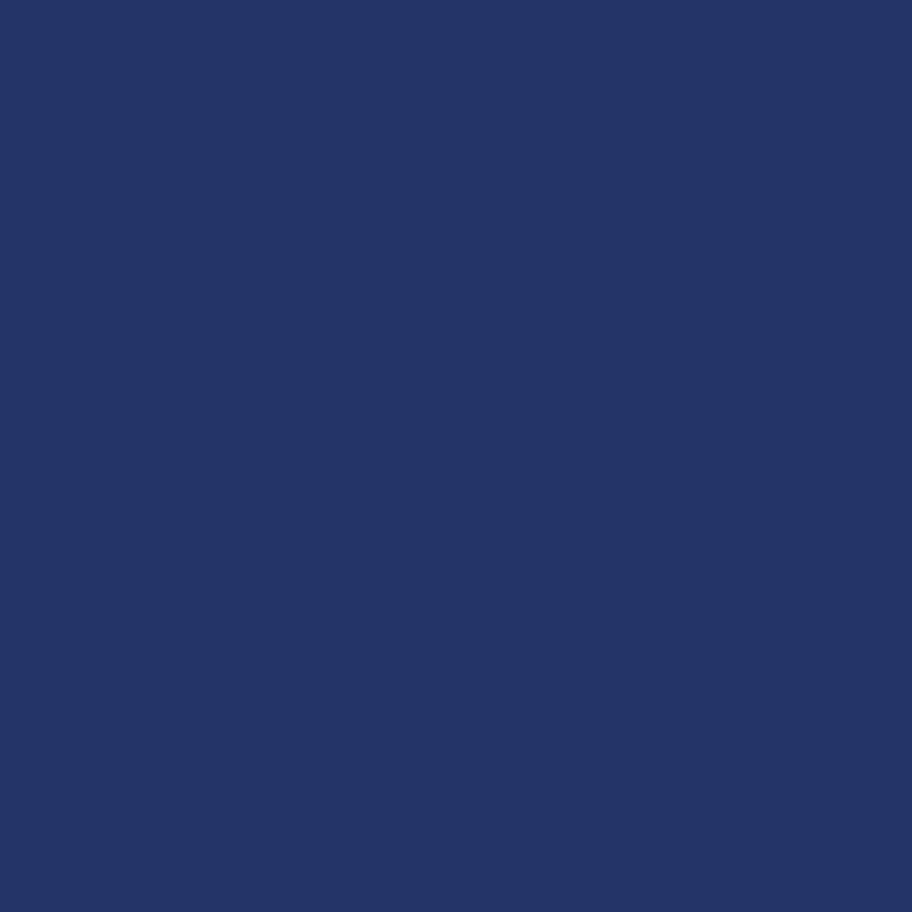 Zartee Flock - Modra